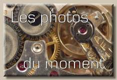 photos du moment